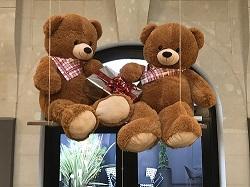 TeddyBear pr Actu BD